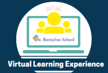 Virtual Learning Experience